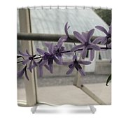 Charming Orchid  Shower Curtain