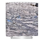 Chasing Snowflakes Shower Curtain