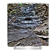 Chasing The Eternal Flame At Chestnut Ridge Park Shower Curtain