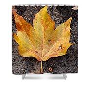 Cheerio Leaf Shower Curtain