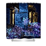 Chelsea Row At Night Shower Curtain