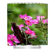 Cherokee Rose Card - Flower Shower Curtain