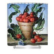 Cherries In Terracotta With Blue Flower Shower Curtain