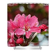 Cherry Blossom Greeting Card Blank With Decorations Shower Curtain