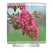 Cherry Blossom Spring Photoart Shower Curtain
