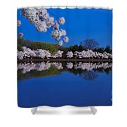 Cherry Blossoms And The Tidal Basin Shower Curtain