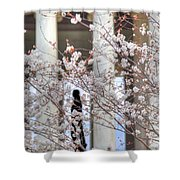 Cherry Blossoms Washington Dc 1 Shower Curtain