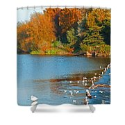 Chester In Autumn Shower Curtain