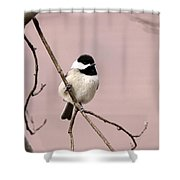 Chick In Pink Shower Curtain
