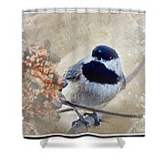 Chickadee Breakfast With Decorations Shower Curtain