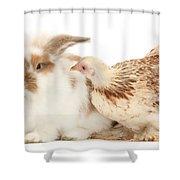 Chicken And Rabbit Shower Curtain