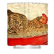 Chicken Hen Painting Art Print Shower Curtain
