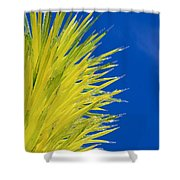 Chihuly Glass Tree Shower Curtain