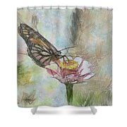 Chinese Butterfly Shower Curtain
