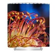 Chinese Flower 1 Shower Curtain