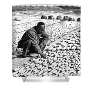 Chinese Man Drying Fish On The Shore - C 1902 Shower Curtain