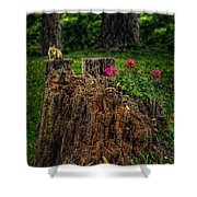 Chip Monk The Chipmunk Shower Curtain