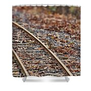 Chipmunk On The Railroad Track Shower Curtain