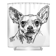 Chiwawa-portrait-drawing Shower Curtain