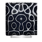 Chladni Oscillations On Metal Plate Shower Curtain