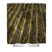 Chocolate Steel Shower Curtain