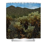 Cholla On The Mountainside Shower Curtain