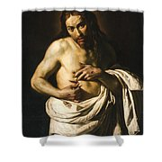 Christ Displaying His Wounds Shower Curtain