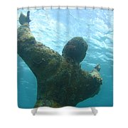 Christ Of The Abyss Shower Curtain