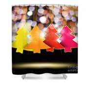 Christmas And New Year 2013 Shower Curtain