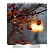 Christmas Berries Shower Curtain