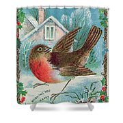 Christmas Card Depicting A Robin  Shower Curtain