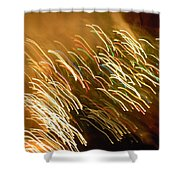 Christmas Card - Santa's Sleigh Shower Curtain