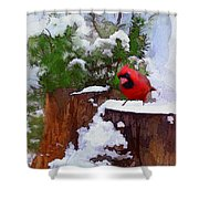 Christmas Guest Shower Curtain