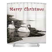 Christmas Swans 2367 Shower Curtain