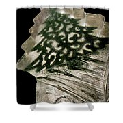 Christmas Tree Frozen In Time Shower Curtain