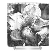 Chrome Flower Shower Curtain