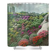 Chrysanthemum Garden - Ott's Greenhouse Schwenksville Pa Shower Curtain