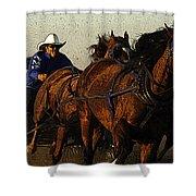 Rodeo Chuckwagon Racer Shower Curtain