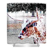Cibolo Ranch Steer Shower Curtain