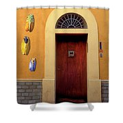 Cicada Door Arles France Shower Curtain