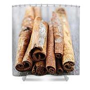 Cinnamon Sticks Shower Curtain by Elena Elisseeva