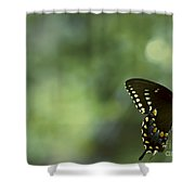 Circle Light Beams Shower Curtain
