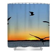 Circle Meeting At Sunrise Shower Curtain by Benanne Stiens