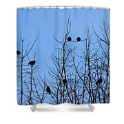 Circle Of Friends Shower Curtain