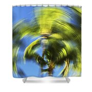 Circular Palm Blur Shower Curtain