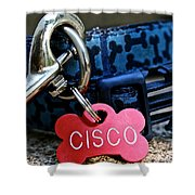Cisco's Gear Shower Curtain