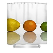 Citrus Fruits Shower Curtain