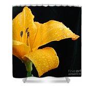 Citrus Rain II Shower Curtain