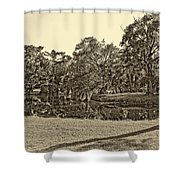City Park Lagoon Sepia Shower Curtain