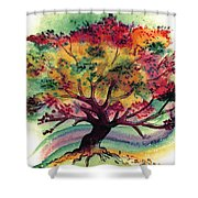 Clad In Color Shower Curtain